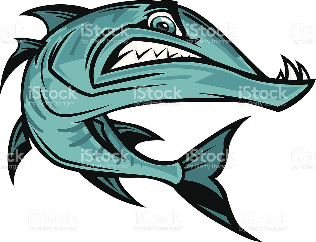 Barracuda clipart #10, Download drawings