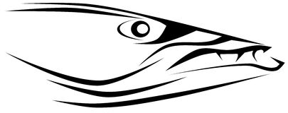 Barracuda clipart #19, Download drawings