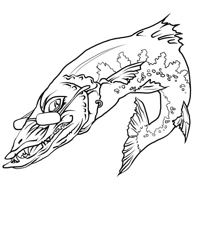 Barracuda coloring #8, Download drawings