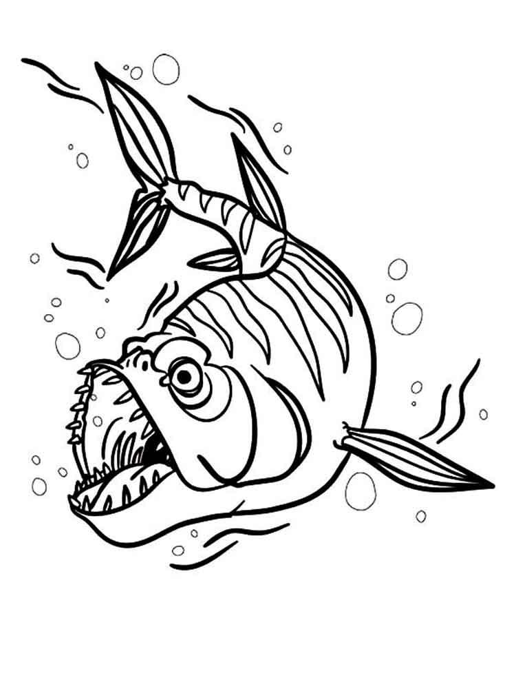 Barracuda coloring #10, Download drawings