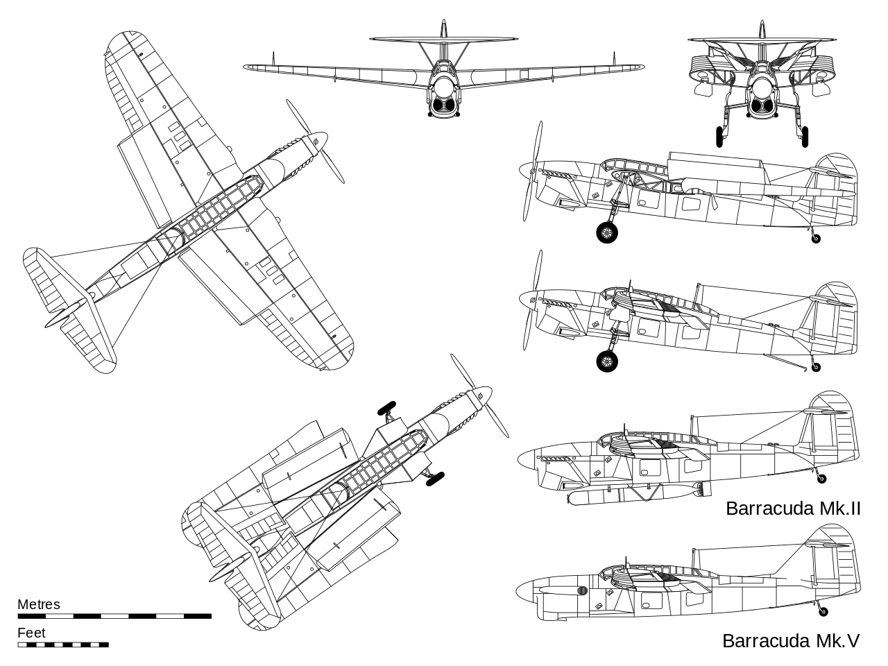 Barracuda svg #14, Download drawings