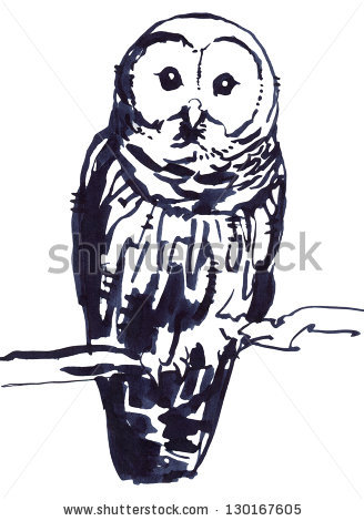 Barred Owl clipart #4, Download drawings