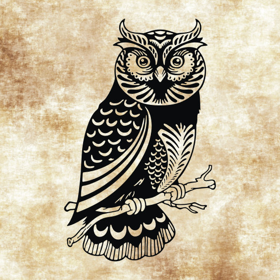 Barred Owl svg #15, Download drawings