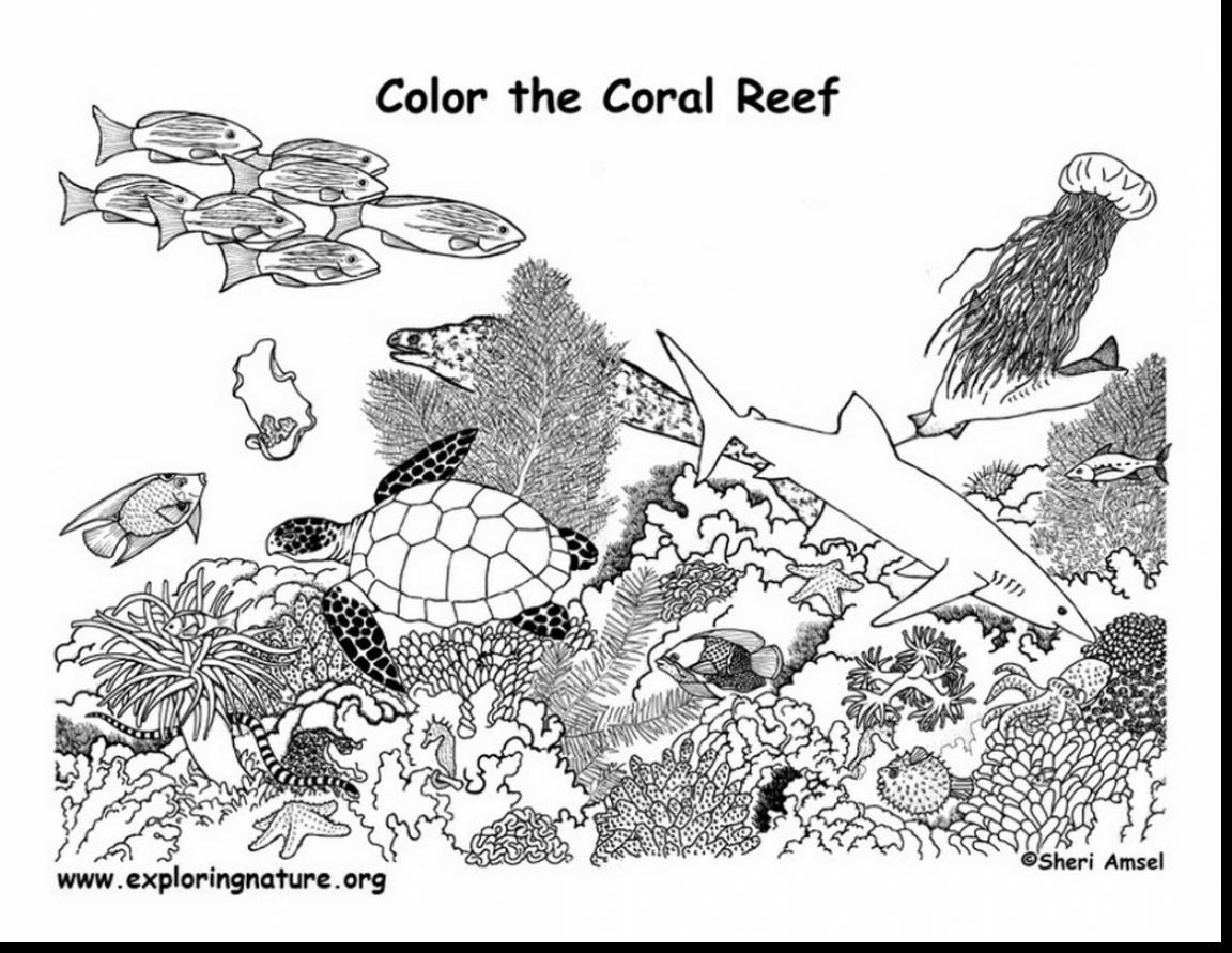 Great Barrier Reef coloring #11, Download drawings