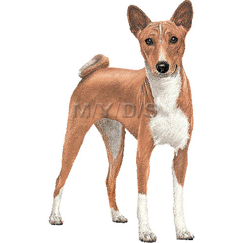 Basenji clipart #4, Download drawings
