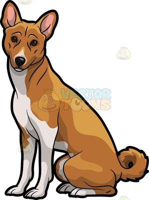 Basenji clipart #12, Download drawings