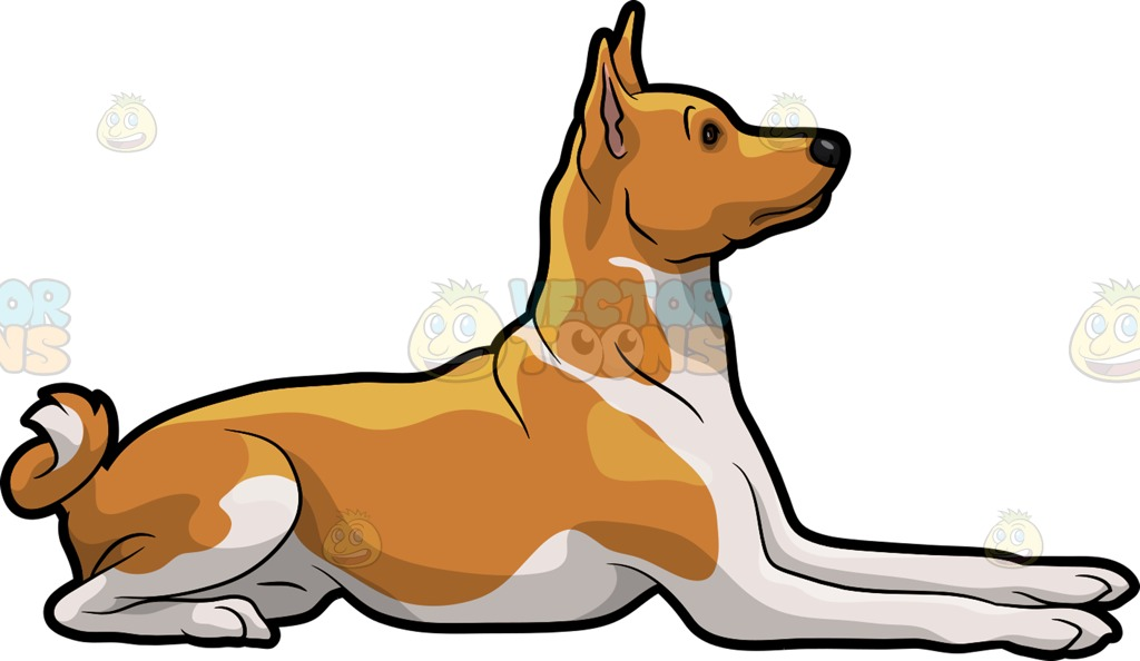 Basenji clipart #20, Download drawings