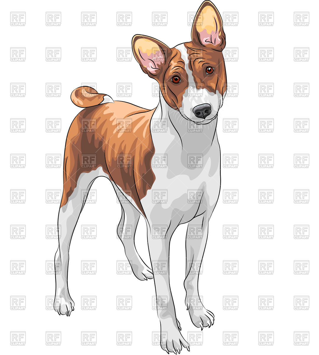 Basenji clipart #7, Download drawings