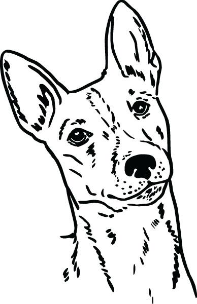 Basenji clipart #17, Download drawings