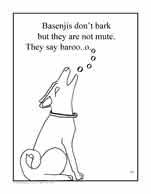 Basenji coloring #5, Download drawings