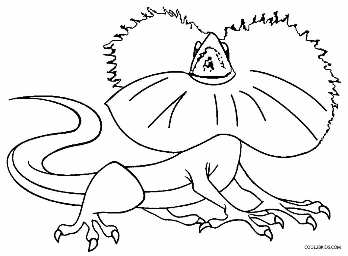 Collared Lizard coloring #17, Download drawings