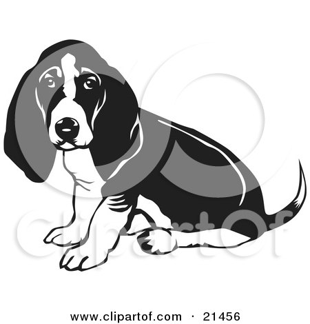 Basset Hound clipart #17, Download drawings