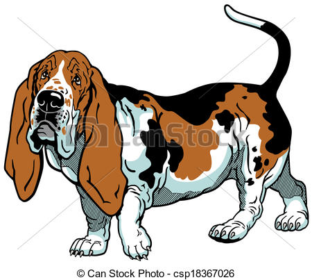 Basset Hound clipart #13, Download drawings