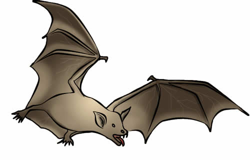 Bat clipart #6, Download drawings