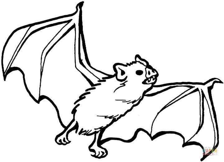 Bat coloring #17, Download drawings