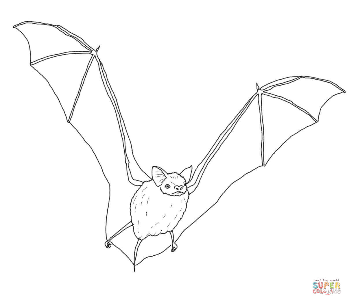 Bat coloring #13, Download drawings