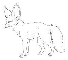 Bat-Eared Fox coloring #1, Download drawings