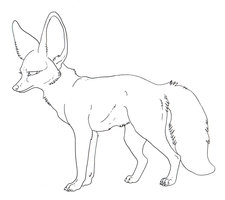 Bat-Eared Fox clipart #4, Download drawings