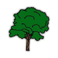 Baum clipart #16, Download drawings