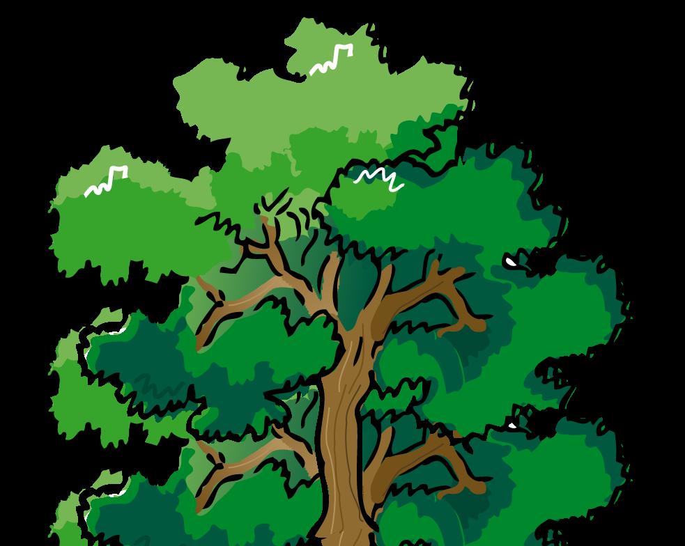 Baum clipart #20, Download drawings