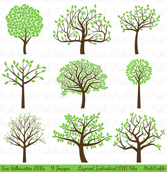 Baobab Tree svg #2, Download drawings