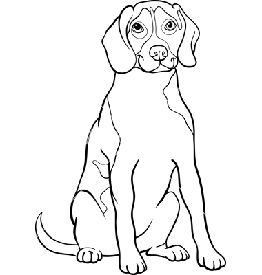 Beagle coloring #9, Download drawings