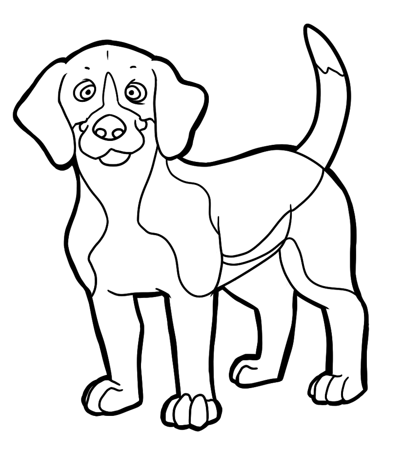 Beagle coloring #15, Download drawings