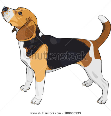 Beagle svg #7, Download drawings
