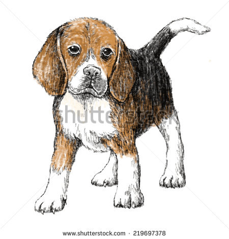Beagle svg #3, Download drawings