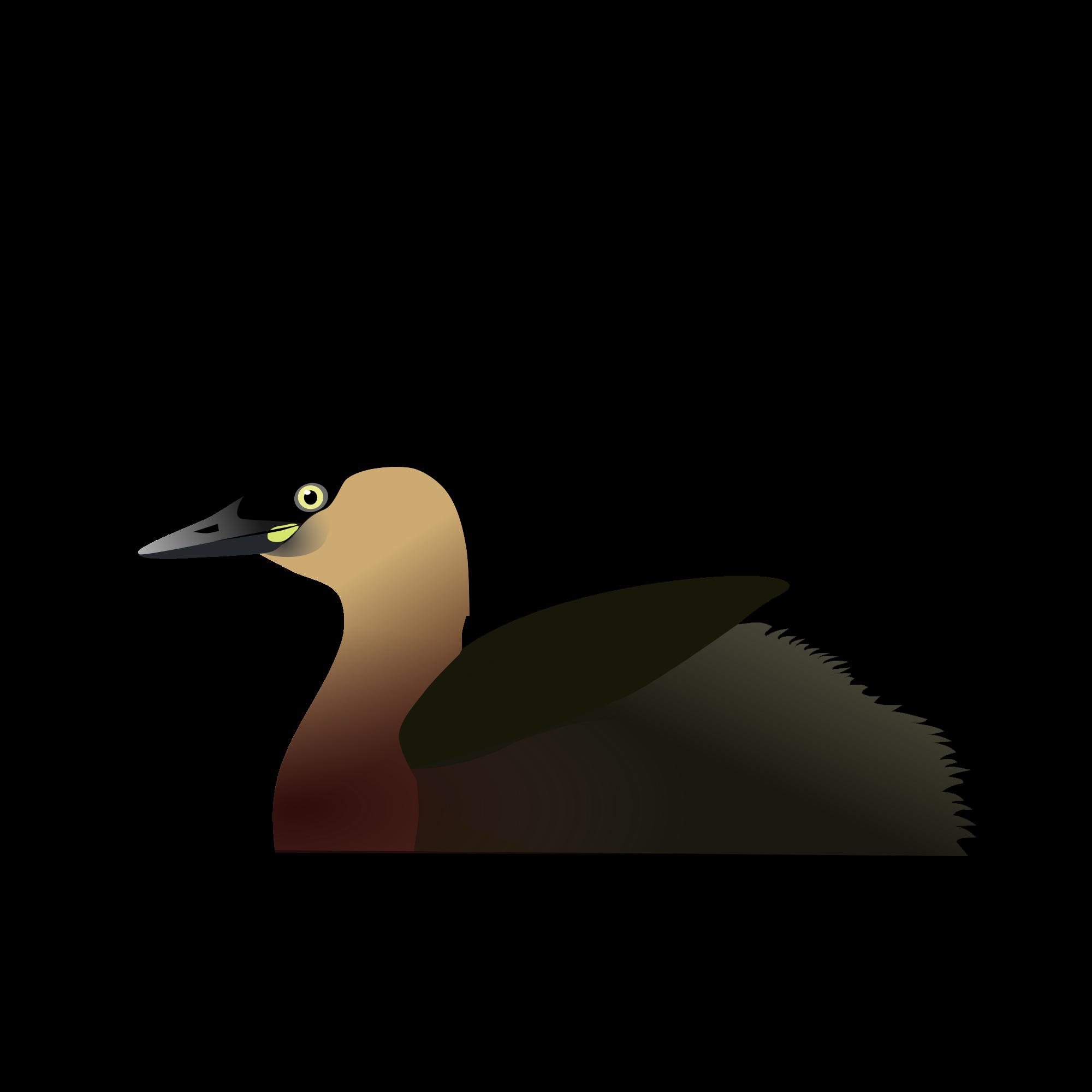 Beak svg #5, Download drawings