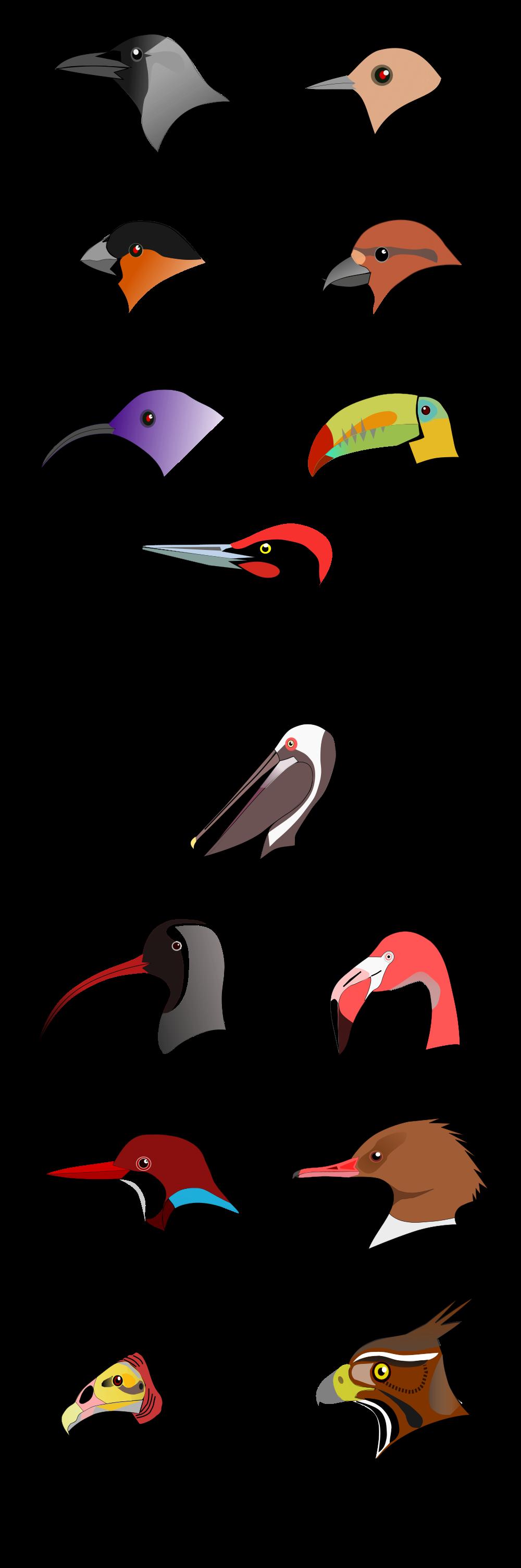 Beak svg #15, Download drawings