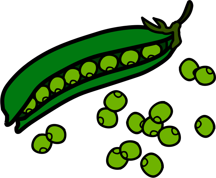 Beans clipart #19, Download drawings