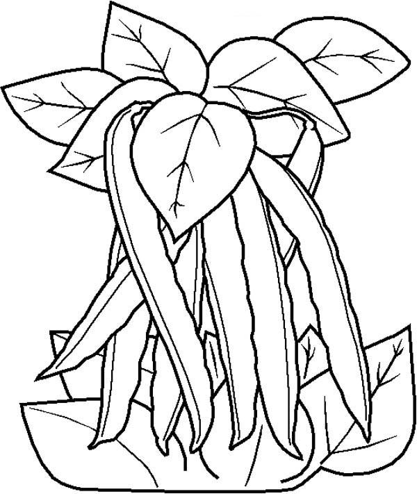 Beans coloring #7, Download drawings