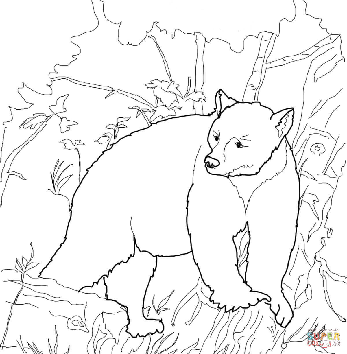 Kermode Bear coloring #11, Download drawings