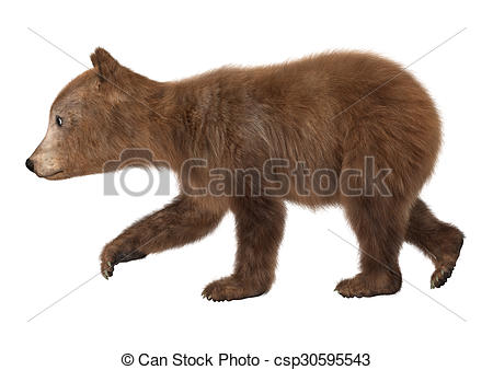 Bear Cub clipart #9, Download drawings