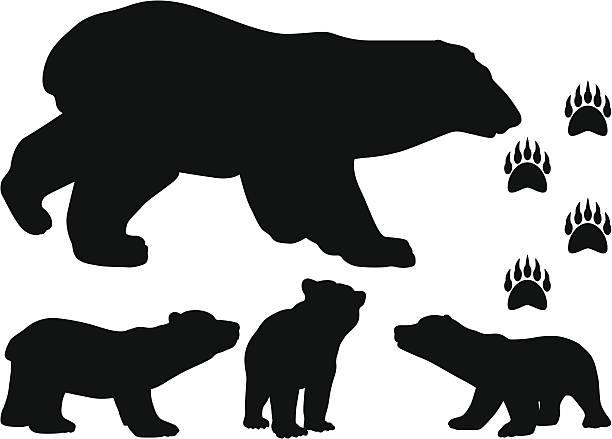 Bear Cub clipart #7, Download drawings