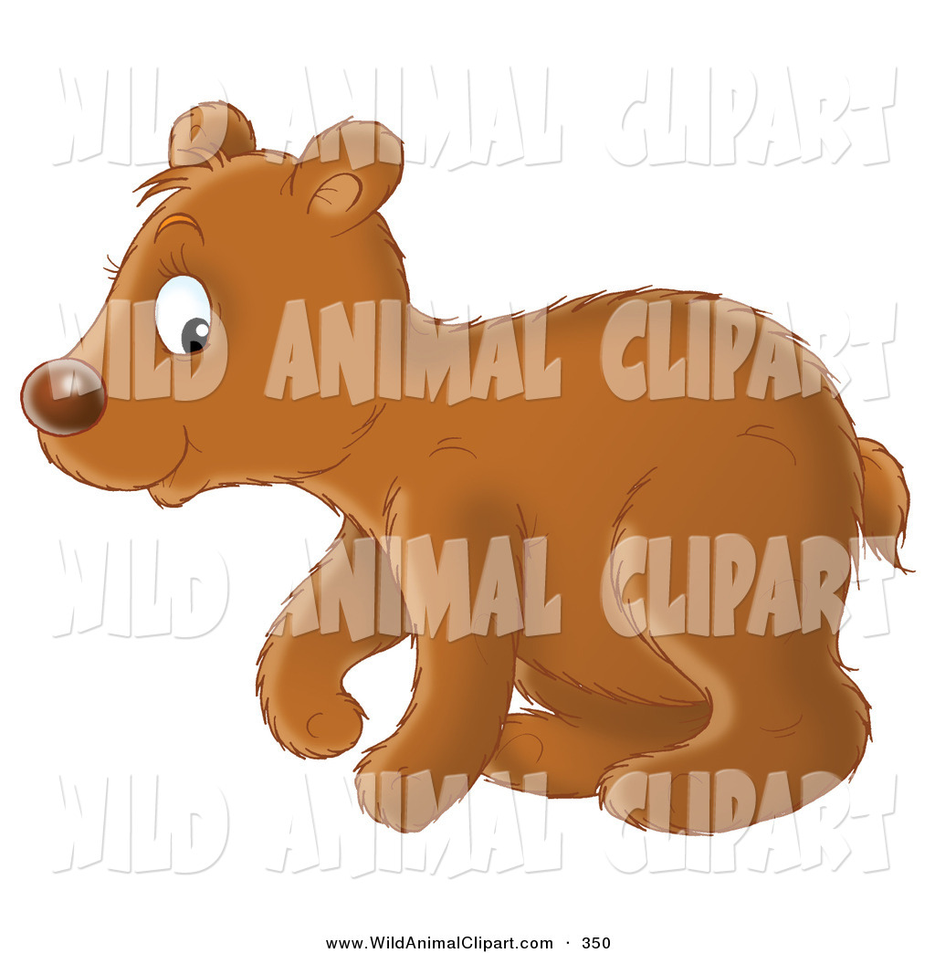 Bear Cub clipart #1, Download drawings