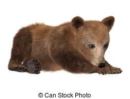 Bear Cub clipart #8, Download drawings