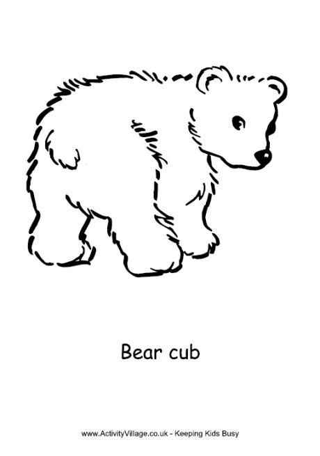 Bear Cub coloring #20, Download drawings