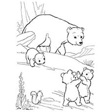 Bear Cub coloring #13, Download drawings