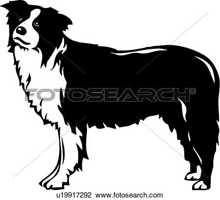 Collie clipart #9, Download drawings