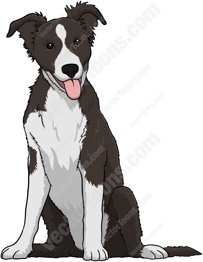 Bearded Collie clipart #14, Download drawings