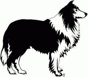 Bearded Collie svg #7, Download drawings