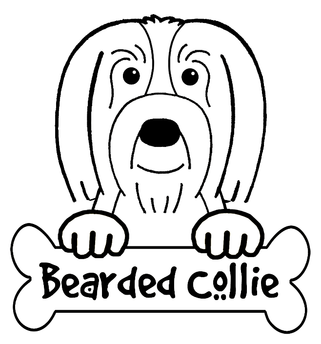 Bearded Collie coloring #7, Download drawings