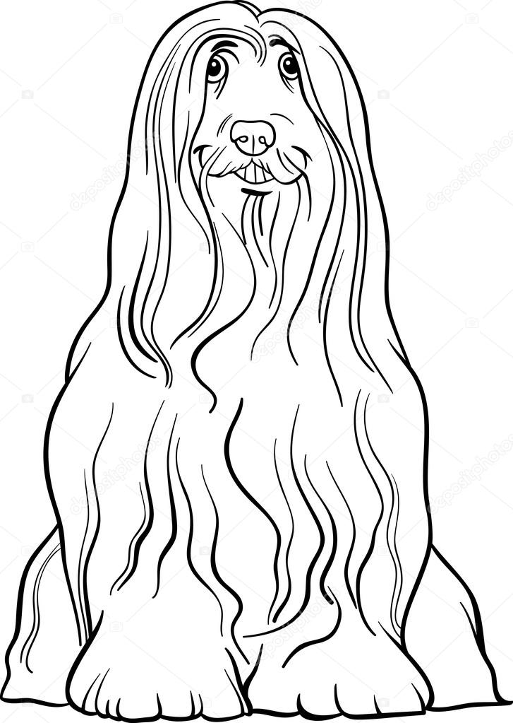 Bearded Collie coloring #8, Download drawings