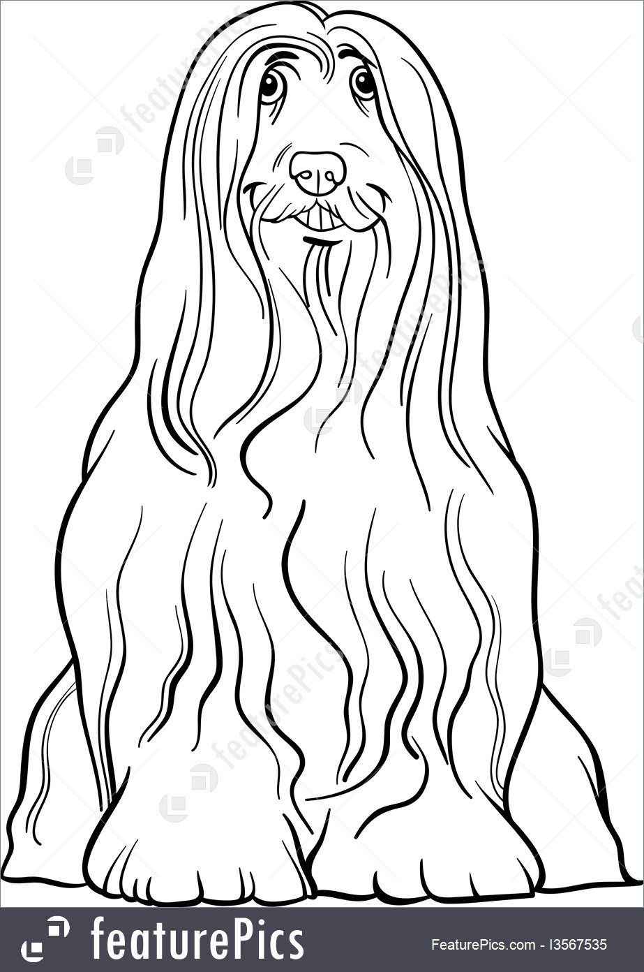 Bearded Collie coloring #11, Download drawings