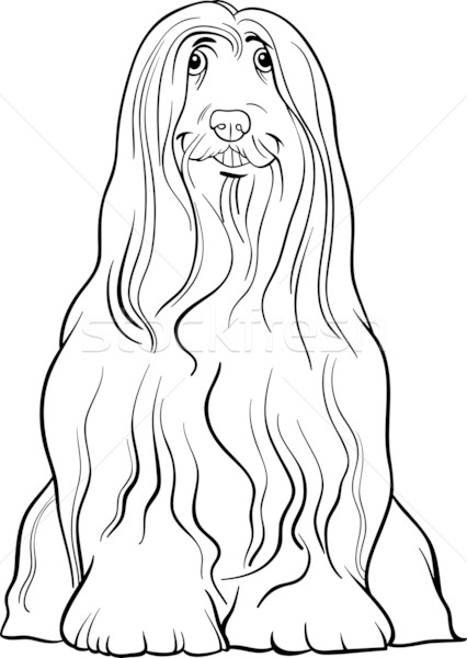 Bearded Collie coloring #18, Download drawings