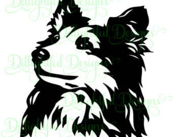 Bearded Collie svg #10, Download drawings