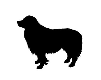 Bearded Collie svg #11, Download drawings