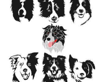 Bearded Collie svg #19, Download drawings